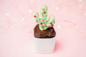 christmas cactus cupcakes
